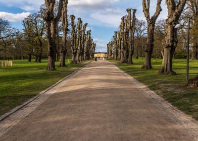 Søndermarken - The big parks of Frederiksberg