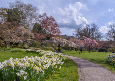 The University Gardens and historic buildings - guided tours