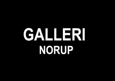 Galleri Norup