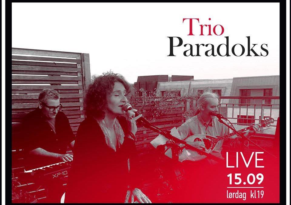 Trio Paradoks – Live music