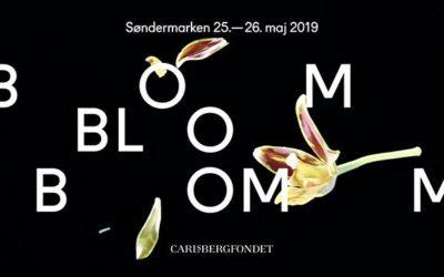 Bloom 2019 – Festival om natur og videnskab – 25 – 26