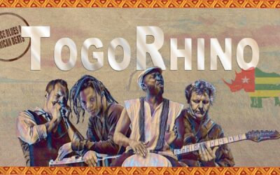 TOGORHINO -TRANCE BLUES & AFRICAN BEATS